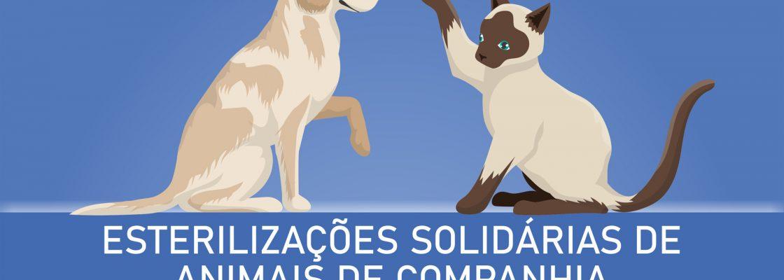 campanha_esterilizacao_caes_gatos_2020