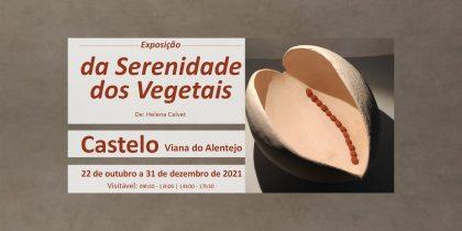 """(Português) Exposição """"da Serenidade dos Vegetais"""""""